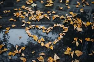 herfstdip