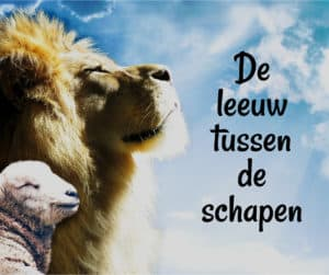 blog leeuw